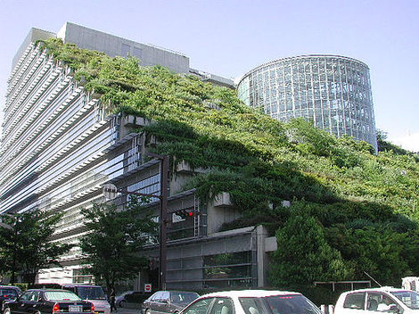 greenroof-sustainablebuildingdesign Eco-friendly Office Space Design Guide & Resources Future of Work