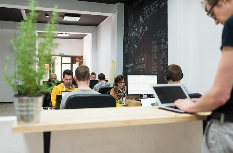 Coworking-Surf-Office The Best Co-Working Offices in the World Inspiration